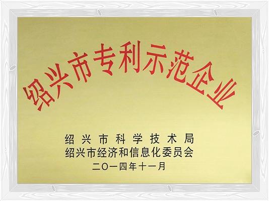 绍兴市专利示范企业